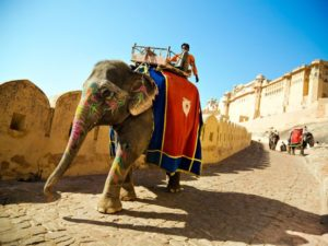 Elephant ride to Amber Fort Jaipur