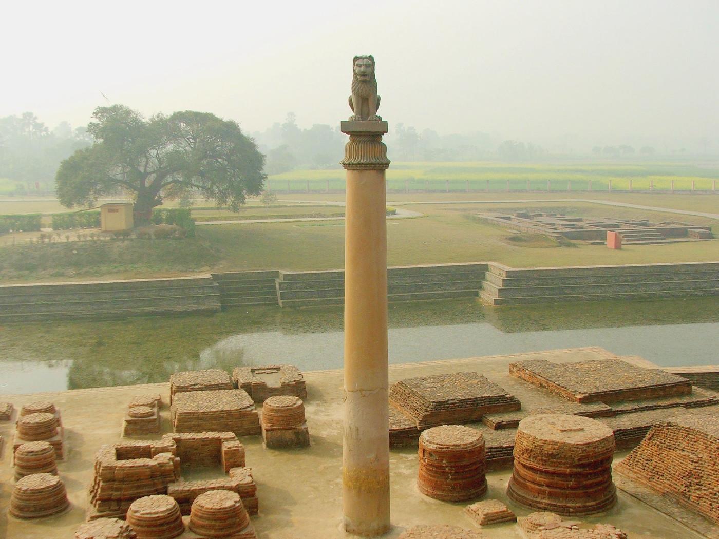 ashoka pillar sarnath