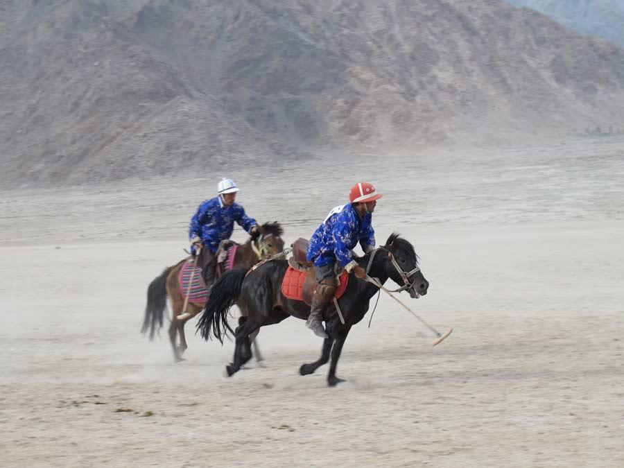 Polo Ladakh